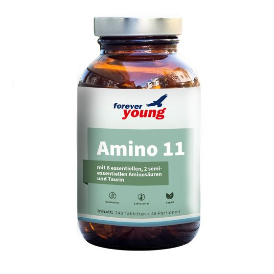 forever young Amino 11