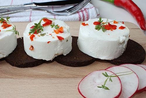 Käse - Quark - Taler auf Radieschen